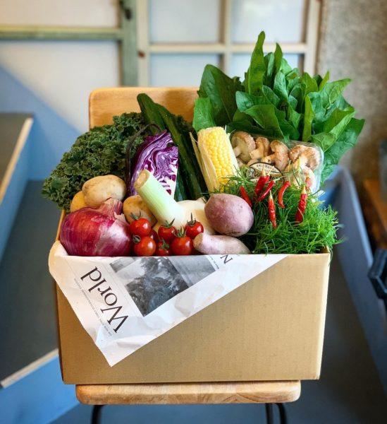 野菜便 お楽しみやさい箱